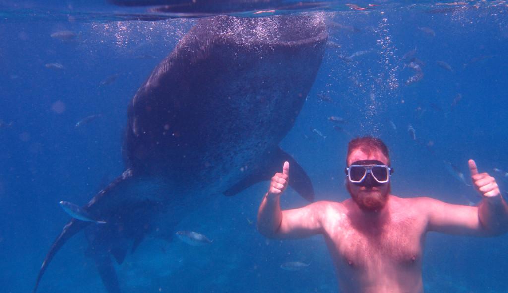 Filipíny - velrybí žralok s Martinem