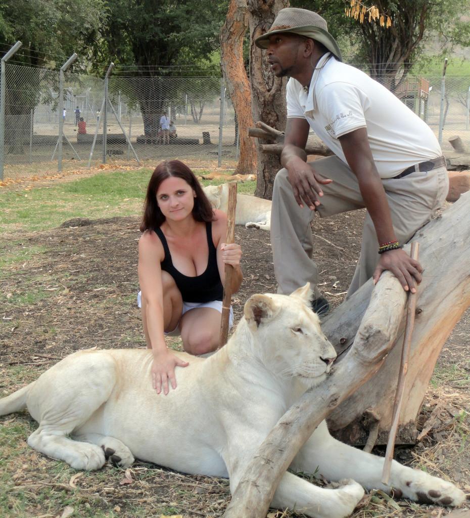 Mauritius - Casela park - interakce se lvy