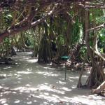 Maledivy-Andaaran-Meedhuparu