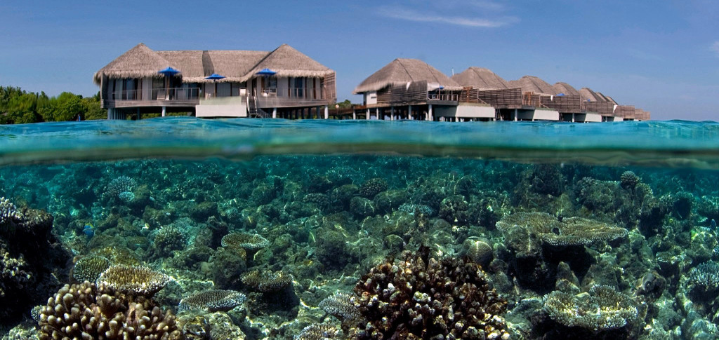 Maledivy-Dusit-Thani-vodní-vily-šnorchování