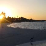 Maledivy-Jumeirah-Vittaveli-pláž