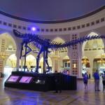 Emiráty-Dubaj-Dubai-Mall