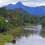 Srí-Lanka-Kitulgala-sloní-koupel
