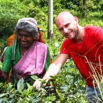 Srí-Lanka-sběračka-čaje-Nuwara-Eliya