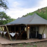Luxusní-safari-Afrika-Tanzánie-národní-rezervace-Serengeti-Pioneer-camp