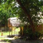 Luxusní-safari-Tanzanie-Zanzibar-Selous-African-Safari-Camp
