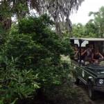 Luxusní-safari-Tanzanie-Zanzibar-Selous-African-Safari-Camp-jeep-safari