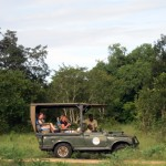 Luxusní-safari-Tanzanie-Zanzibar-Selous-African-Safari-Camp-jeep-safari