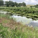 Golf-Litva-Vilnus-Grand-Resort-The-V-Golf-Club-golfový-turnaj-Snail-Travel-Cup