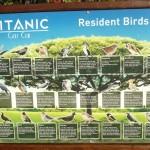 Golf-Turecko-Belek-golfové-hřiště-Titanic