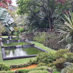 Azory - Sao Miguel - Furnar - Terra Nostra Garden