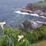 Azory - ostrov Sao Miguel - vyhlídka Santa Irina