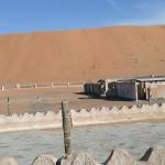 Omán - poušť Wahiba - Arabian Oryx Camp