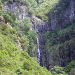 Madeira-levada-Risco-aMadeira-levada-Risco-a-25-pramenů-25-pramenů