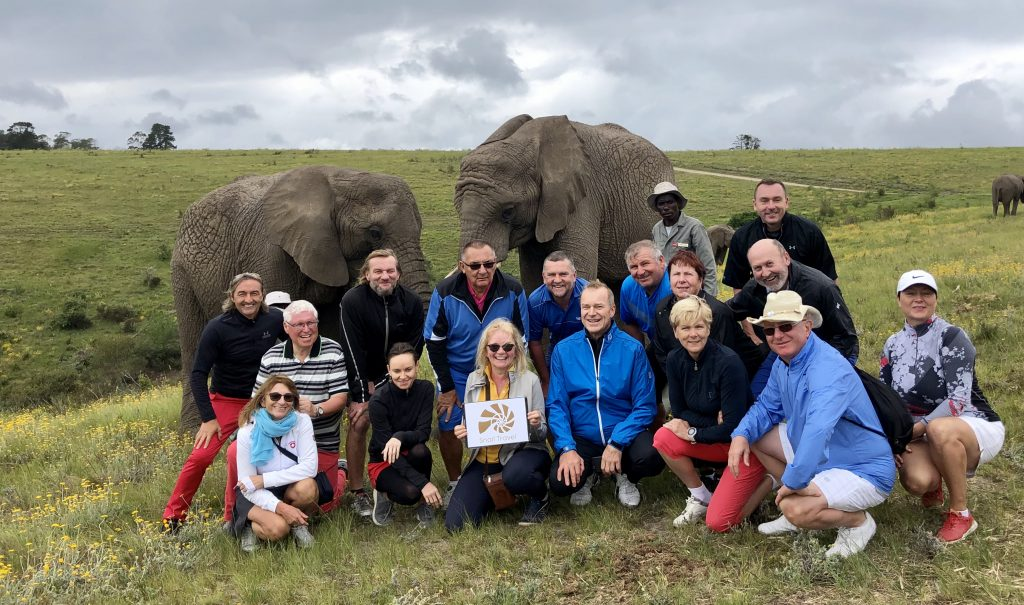 Knysna-sloní-sirotčinec